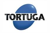 logotipo tortuga